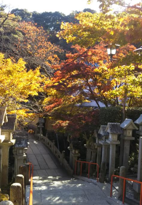 奈良県 大和郡山市小泉駅前美容室SWEET ROOM 紅葉の季節ですね(^^♪
